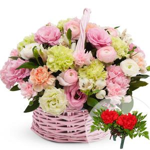 파스텔카네이션꽃바구니